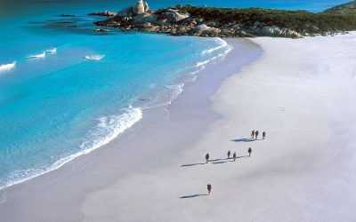 REALLY Great Walks of Australia!